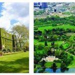 Study in Regents University London (1)