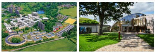 Study Abroad in University of Essex 1