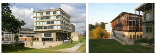 Study Abroad in University of Essex 3