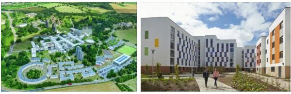 Study Abroad in University of Essex 4